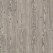 old wood pine