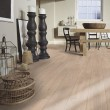 MEISTER GERMAN QUALITY LAMINATE FLOORING CLASSIC LD75 COLLECTION CALEDONIA OAK 8MM